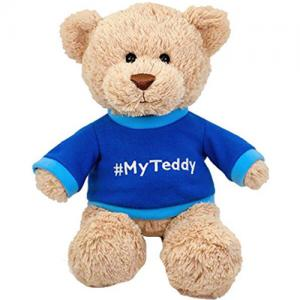 Custom logo Multi-style teddy bear plush toy